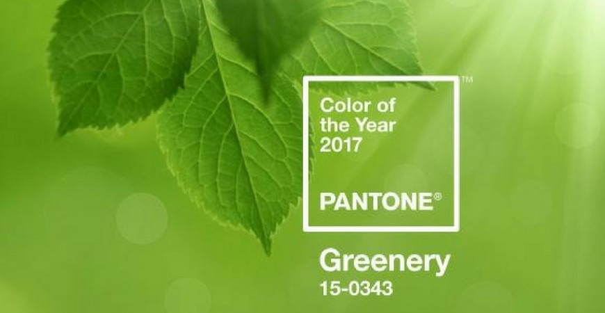 GREENERY - Official Color of 2017